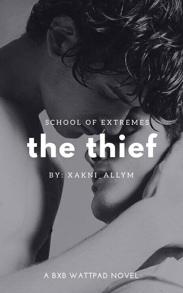 SCHOOL OF EXTREMES: The Thief ( Twins BxB )